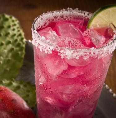 cactus-margheritta